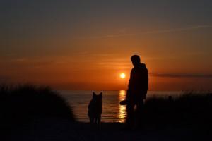 sunset-808805_1920